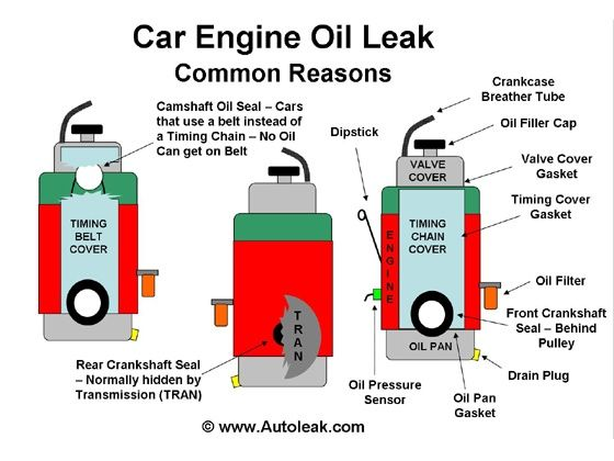 How to check for engine oil leak page 2 for Motor oil guide for cars