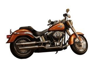 Photo of Harley Davidson FLST